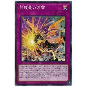 画像1: 武装竜の万雷