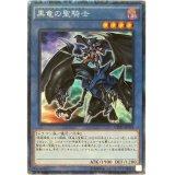 黒竜の聖騎士 Collectors