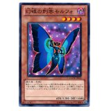 幻蝶の刺客モルフォ