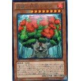 森羅の仙樹 レギア Rare